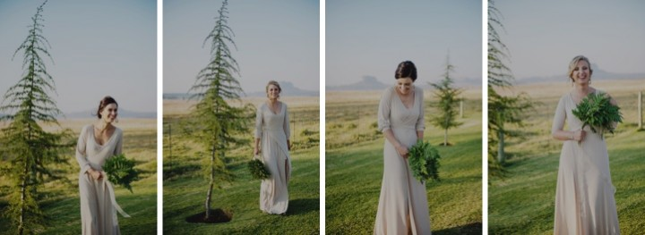 clarens wedding andes gingerale_126