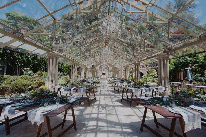 shepstone gardens wedding gingerale_023