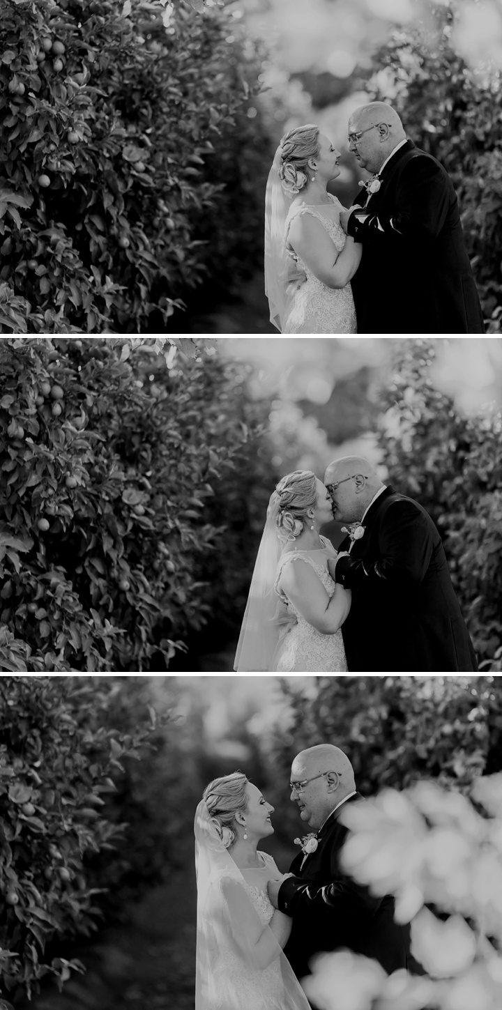 paarl cape town wedding_108