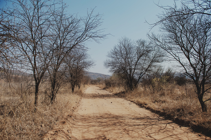 Free State Photographer_001