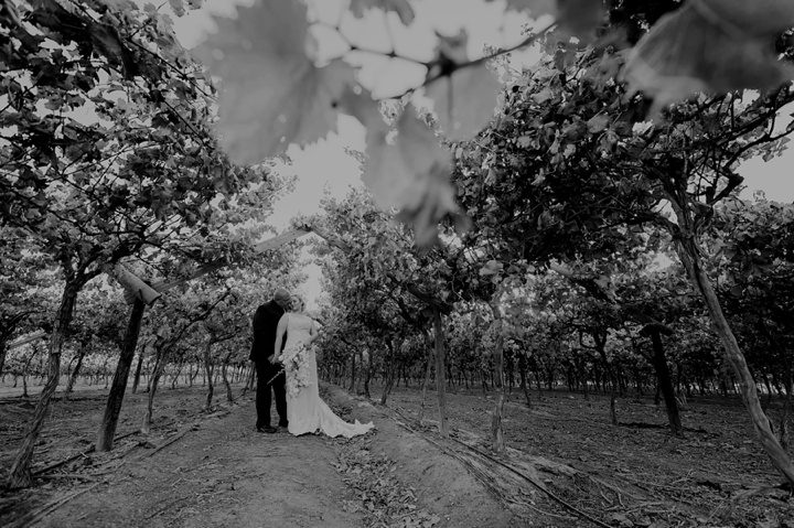 paarl cape town wedding_114